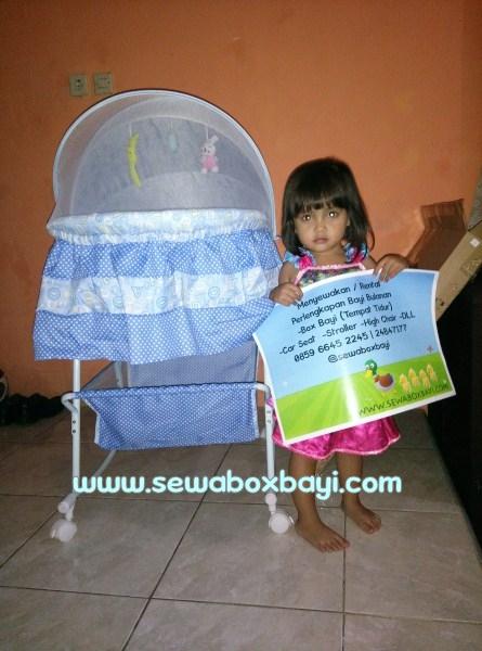 sewa-box-bayi