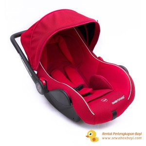Babydoes Carseat (1)