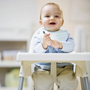 rental kursi makan bayi