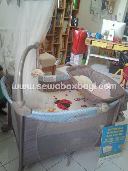 adhy latinos bsd city rental box bayi jaring parasut lipat